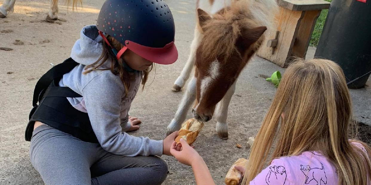 Kézműves- és lovastábor rászoruló gyerekeknek Ligeten